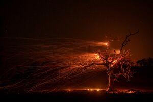تصویری خیره کننده از شدت باد در آتش سوزی کالیفرنیا