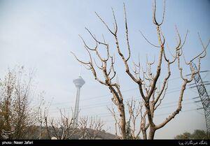 هوای تهران ناسالم شد/ تداوم هوای آلوده تا روز آینده