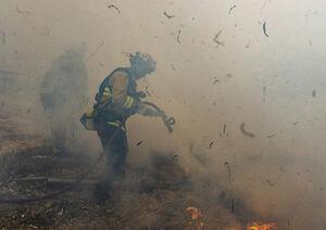 آتشنشان در کالیفرنیا - نمایه