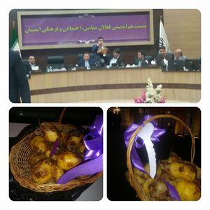 گلابیهای برجام؛ پذیرایی مردم یزد از رئیس دفتر روحانی +عکس