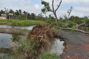 طوفان مرگبار «بلبل» در هند