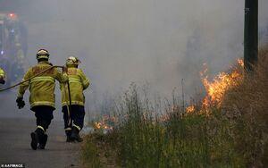 ادامه آتشسوزیهای مهیب استرالیا