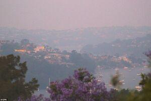 عکس/ آتشی مهیب در یک قدمی سیدنی
