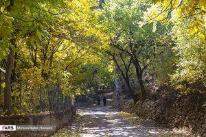 عکس/ پاییز زیبای روستای «وَفْس»