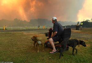 استرالیا همچنان غرق در آتش و دود