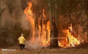 عکس/ ادامه آتشسوزی گسترده در استرالیا
