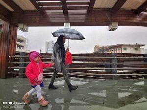 عکس/ طراوت روز بارانی در گرگان