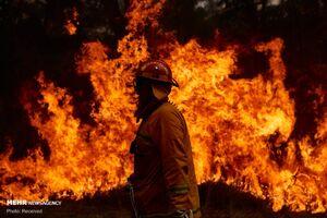 عکس/ آتش در سرزمین کانگوروها