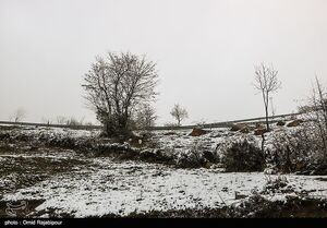 هواشناسی|بارش برف و باران ادامه دارد/ ورود سامانه بارشی جدید به کشور از چهارشنبه