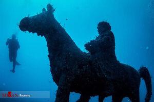 عکس/ موزهای در زیر آب