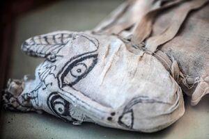 نمایش دهها مومیایی حیوانات در مصر