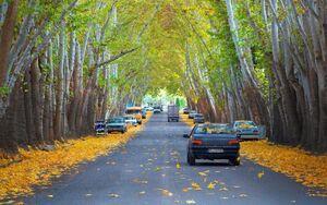 تصویری زیبا از یکی از خیابانهای خوانسار