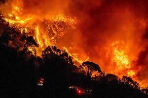 «کالیفرنیا» بازهم در آتش بیتدبیری میسوزد +عکس و فیلم