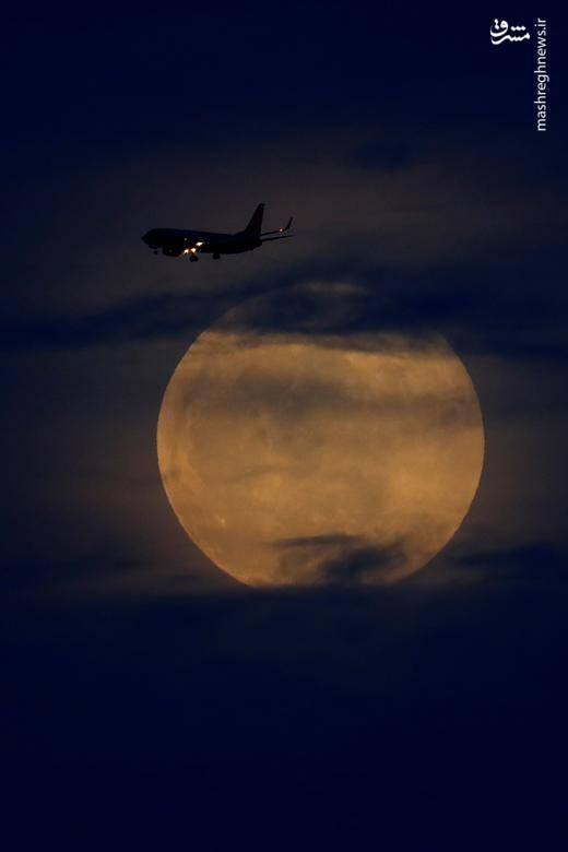يك فروند هواپيمای تجاری در حال پرواز قبل از شروع كسوف كامل ماه در كاليفرنيا /  ۲۰ ژانویه ۲۰۱۹