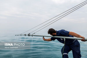 عکس/ عملیات پاکسازی جزیره خارگ از آلودگی نفتی