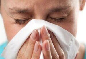 جان باختگان بر اثر آنفولانزا افزایش یافت