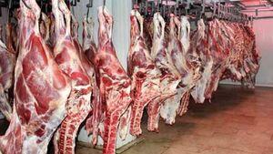 قیمت گوشت تا پایان سال افزایش نمییابد