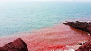 ساحل سرخ ایران