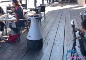فیلم/ عملکرد جالب گارسون ربات در رستوران
