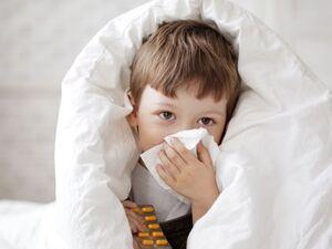 فوت ۸۱ نفر بر اثر آنفلوانزا از مهرماه تاکنون
