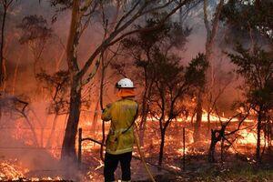 عکس/ استرالیا همچنان در آتش میسوزد