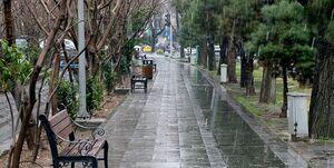 کاهش دما تا 8 درجه و توصیه به باغداران/ جمعه در تهران باران داریم