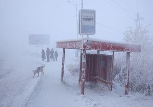 عکس/ زندگی در سردترین نقطه جهان