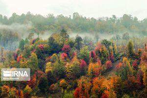 عکس/ پاییز رنگارنگ در ییلاق اورماملال گیلان