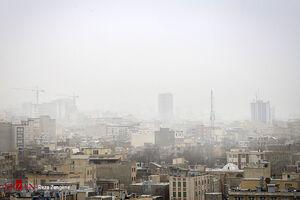 فیلم/ سقط زندگی در آلودگی هوا
