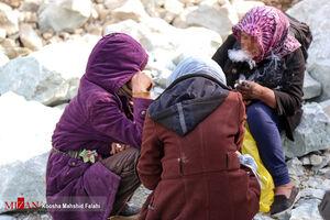 عکس/ جمع آوری معتادان متجاهر از دره فرحزاد
