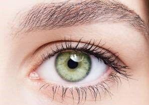 چشم نمایه