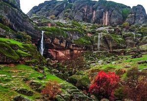 عکس/ طبیعت بینظیر مخمل کوه