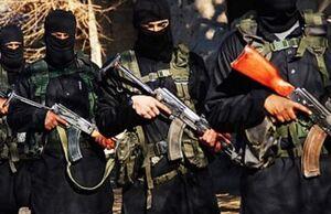 داعش در کوهستانهای عراق در حال تجدید قوا است