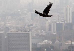 هوای تهران بازهم آلوده شد