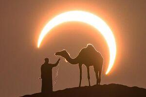 عکس/ کسوف در امارات؛ عکسی از جاش کریپس، عکاس سرشناس جهانی - کراپشده