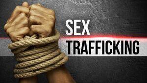 فلوریدا؛ قطب قاچاق انسان آمریکا