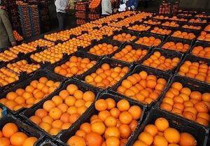 کاهش قیمت ۹ میوه در میادین میوه و تره بار