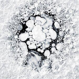 عکس/ حبابهای یخ زده در آلاسکا