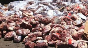 فروش گوشتهای فاسد به مشتریان کبابی