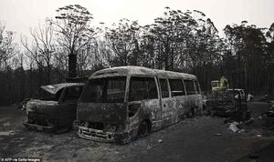 فیلم/ آتش زدن صدها خودرو در اولین روز سال نو