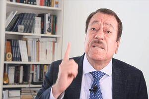 فیلم/ ستایش کارشناس مطرح عرب از خطبههای رهبر انقلاب