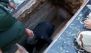 آرامگاه شهید سلیمانی