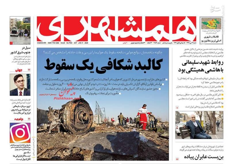 همشهری: کالبد شکافی یک سقوط