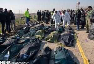 شناسایی ۵۰ پیکر جان باختگان حادثه سقوط هواپیمای اوکراینی