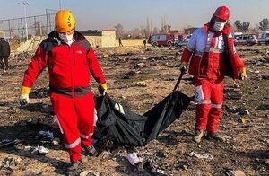 ارسال پرونده هواپیمای اوکراینی به سازمان قضایی نیروهای مسلح