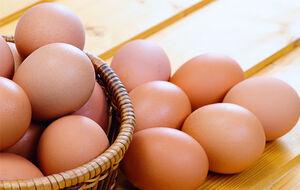 تخم مرغ نمایه