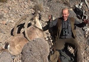 شکار / محیط زیست