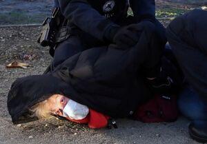 بازداشت ۱۸۵ فعال محیط زیستی در بروکسل