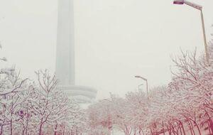 عکس/ برج میلاد در یک روز برفی