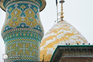 عکس/ روز برفی در حرم سیدالکریم(ع)